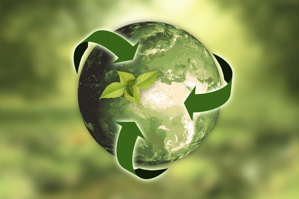 14 Green Ideas for Clinics